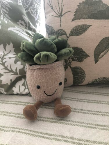 Pluszaki w kształcie roślin photo review