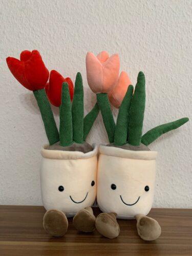 Pluszaki w kształcie tulipanów photo review